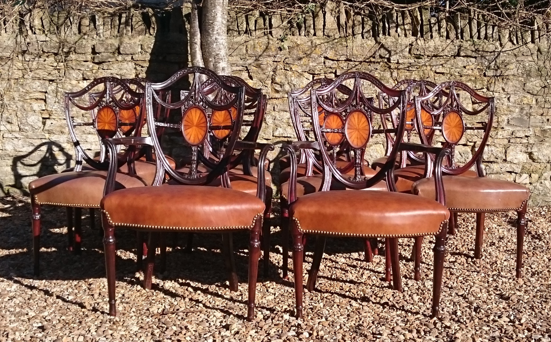Antique Dining Chairs Sets of 12 Hares Antiques