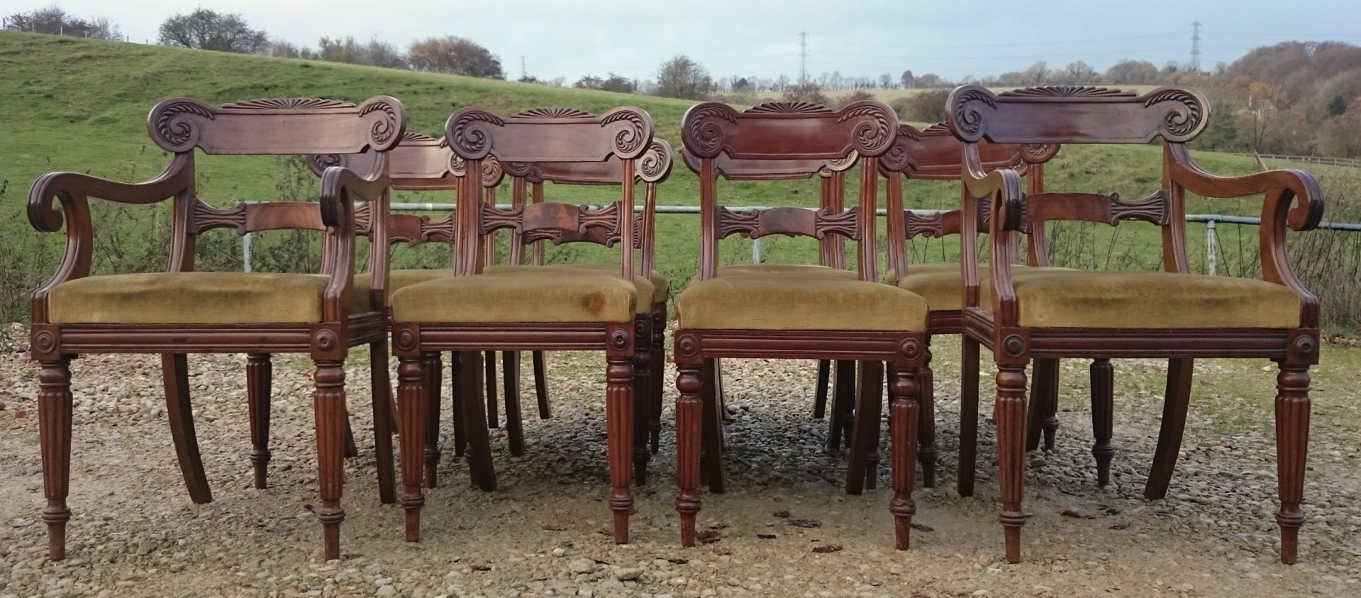 Antique regency dining chairs - Set Of Twelve Antique Dining Chairs