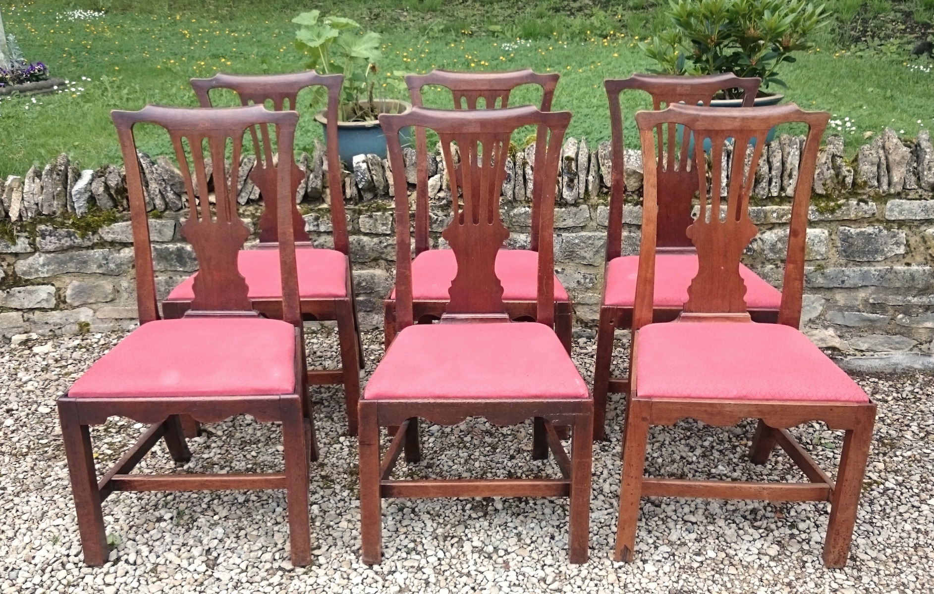 Antique Dining Chairs, Sets of 6 - Hares Antiques