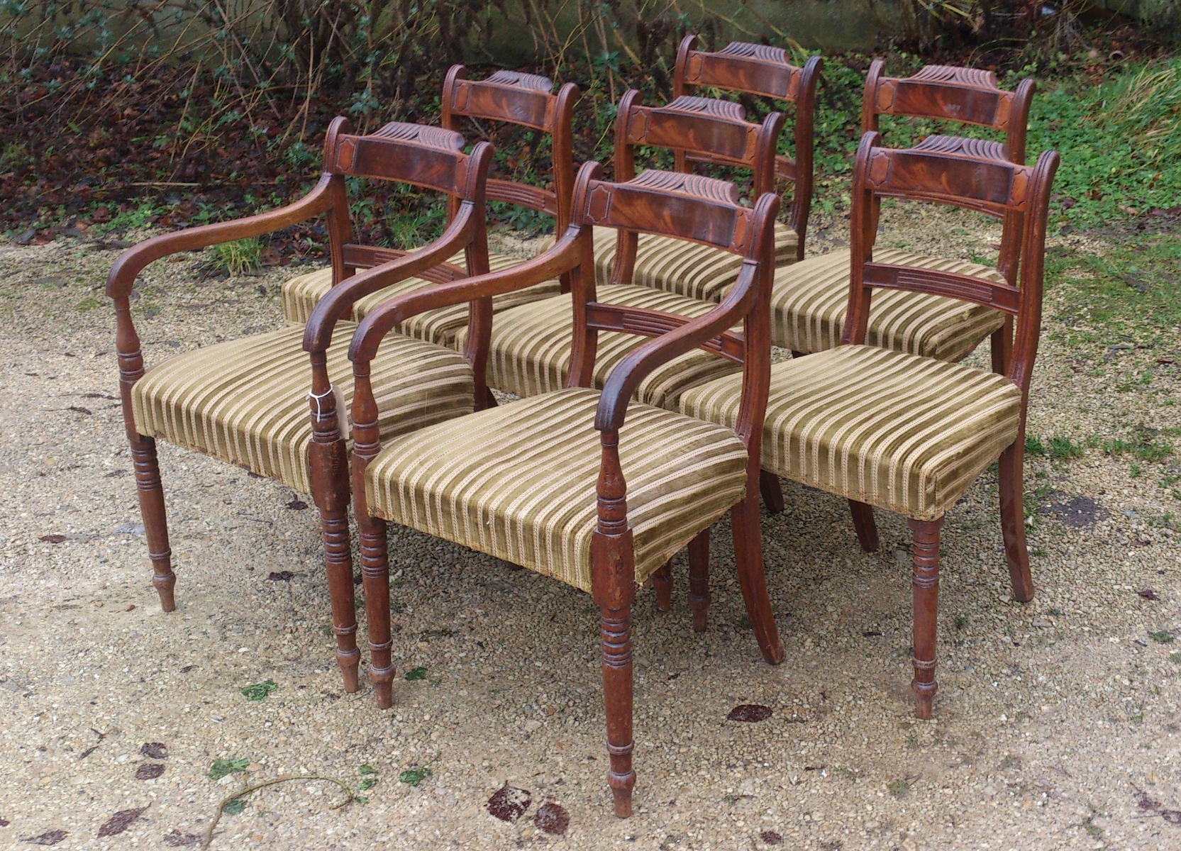 Antique regency dining chairs -  Set Of 8 Regency Mahogany Antique Dining Chairs2 Jpg